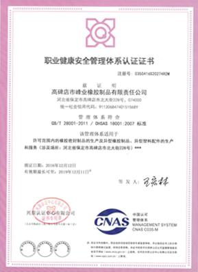 <b>职业健康安全管理体系认证证书</b>